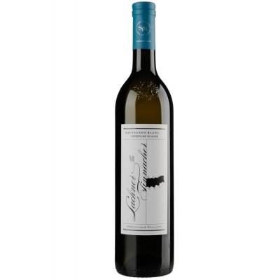 Sauvignon Blanc Steirische Klassik 2010, Lackner-Tinnacher